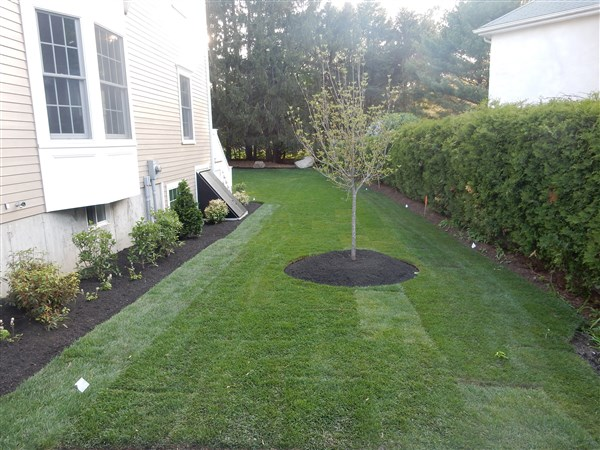 Lsouza Landscaping and Construction, Inc